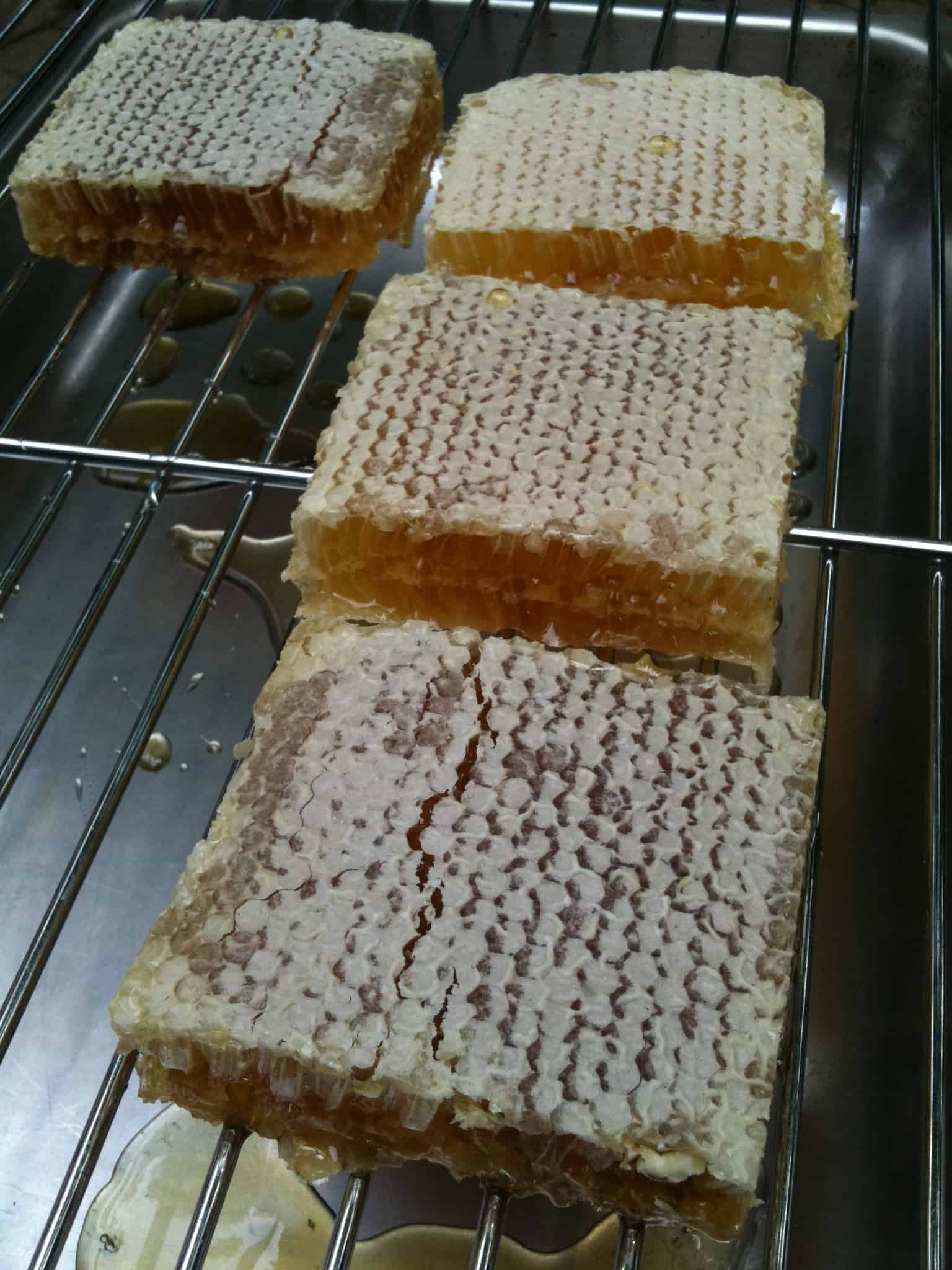 Comb Honey: Right From the Hive!