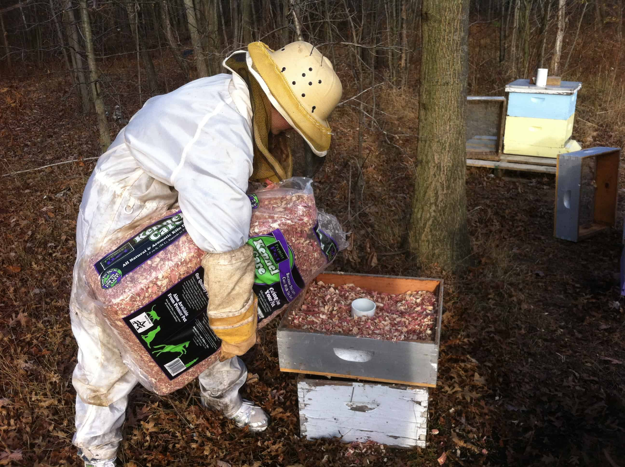 How to Winterize Bee Hives pics
