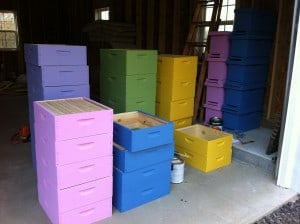 Best way to get your teenage daughters to paint hive bodies?  Pick out cool bright colors.